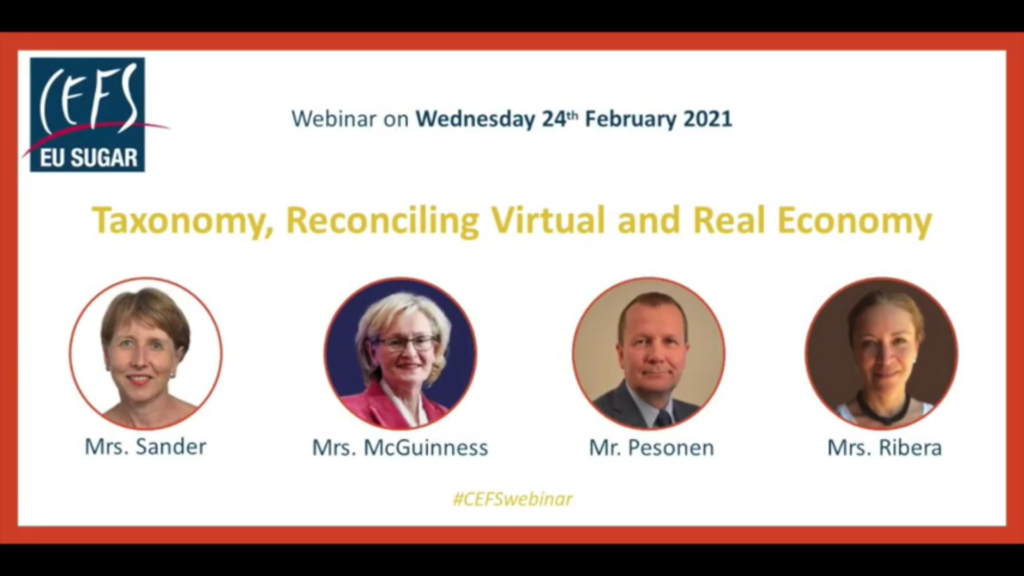 CEFS webinar: Taxonomy Reconciling Virtual and Real Economy